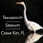 Tranquility and Serenity in Cedar Key - Vacation Rentals