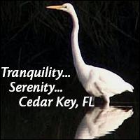Tranquility & Serenity in Cedar Key - upscale condo vacation rentals
