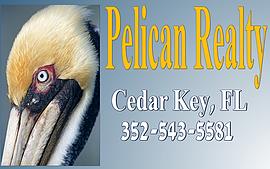Pelican Realty